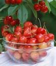 月经不调吃什么好 可以吃水果吗