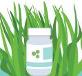 螺旋藻怎么吃减肥的方法告诉你