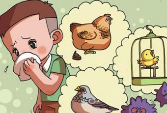 如何预防禽流感