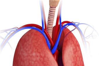 支气管扩张可以治吗