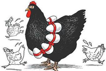 禽流感的症状是什么 中医怎么治疗