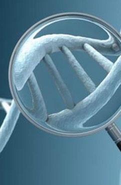硬皮病会有遗传吗 如何预防硬皮病呢